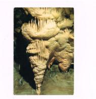 Grottes Des 1001 Nuits.Expédié à Maldegem. - Hotton