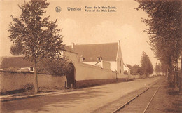 Waterloo Ferme De La Haie Sainte Rails Tramway - Waterloo