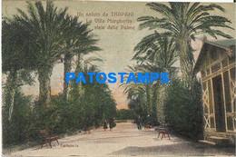 166485 ITALY TRAPANI SICILIA VILLAGE MARGHERITA & AVENUE OF PALMS POSTAL POSTCARD - Unclassified