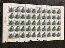 Belgie 2885 Buzin Birds 16fr Volledig Vel Drukdatum 17/1/2000 Plaatnummer 2 + Signature Andre Buzin - 1985-.. Uccelli (Buzin)