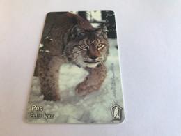 13:335 - Bulgaria Chip Lynx - Bulgarie