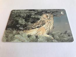 13:336 - Bulgaria Chip Owl - Bulgarie