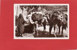 TUNISIE---BIZERTE---Marchand De Charbon---voir 2 Scans - Tunesien