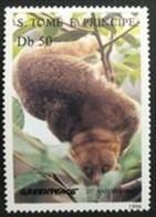 SAINT THOMAS ET PRINCE - Potto (Perodicticus Potto) - Sao Tome En Principe