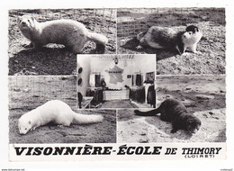 45 THIMORY Vers Montargis N°27722 Visonnière Ecole Tél : 7 Quelques Spécimens De Visons En 1965 - Montargis