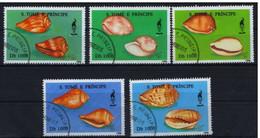 SAINT THOMAS ET PRINCE - Coquillages - Sao Tome En Principe