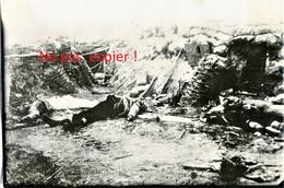 PHOTO ALLEMANDE - CADAVRES DANS UNE TRANCHEE ANGLAISE A LANGEMARK PRES DE YPRES BELGIQUE - BELGIE - GUERRE 1914 1918 - 1914-18