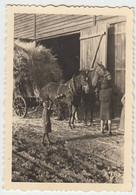 (N126) Orig. Foto Pferdefuhrwerk, Weisenbach (BaWü), Febr. 1944 - Otros