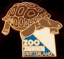 TORTUE - ZOO ZURICH - SUISSE - SCHWEIZ - SVIZZERA - SWITZERLAND - TURTLE - SCHILDKRÖTE - ZÜRICH - TARTARUGA -    (27) - Animals