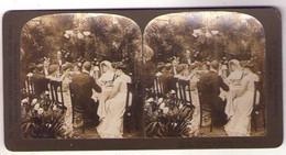 Stéréo 110, HC White CO 5517, The Wedding Breakfast - Stereoscopic