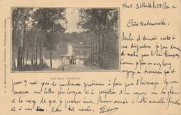 Canada - Elm Park , WINNIPEG - 1905 - Winnipeg