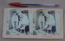 Stéréo 207, Copyright 1897, By BW Kilburn 11896, That Borrid Mouse, Bon état - Stereoscopic