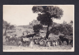 Carte Photo Campagne Du Maroc Soumission Tribu Au Col De Tizi R'nim (animée 47845) - Altri