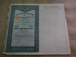 Cie MINIERE DU TORGAN - AUDE - CERTIFICAT DE DETENTION DE 25 ACTIONS DE 100 FR - 1928 - N° 1 404 A 1 428 - Mines