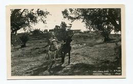 Israel : MANARA Hilltop Village, MENARA Kibbutz ? - Israele