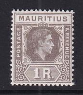 Mauritius: 1938/49   KGVI    SG260b     1R   Grey-brown   MH - Mauritius (...-1967)