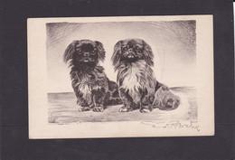Dog Card  -  Two Pekinese Dogs. - Hunde
