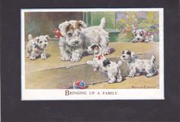 Dog Card  -  Bringing Up A Family !! -  Florence E Valter.   1936. - Hunde