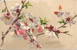 Th - Illustrateur - KLEIN - Fleurs Sur Branche - Klein, Catharina