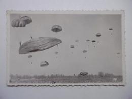 Aviation BETAP Descente De Parachutes Au Camp D'Astra à PAU Ecole Des Troupes Aéroportées - Photo à Voir - Aviation