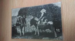 CPA -  76. ILE D OLERON - L'âne En Culotte, Départ Pour La Pêche - Ile D'Oléron