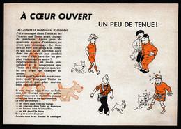 Tintin : Lot De 3 Publicités TINTIN De 1976 ( Voir Photos ). - Advertising