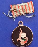 La Légion étrangère à Aubagne  Militaria Médaille Militaire Porte Clé Porte Clef - Equipement