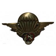 INSIGNE De Brevet De Moniteur Parachutiste DRAGO à Voir... - Francia