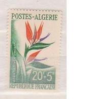 ALGERIE     N°  YVERT  351   NEUF SANS  CHARNIERE   (NSCH 3/29 ) - Unused Stamps