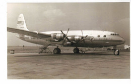 PHOTO AVION  AVIATION  DOUGLAS DC 4 - Aviation