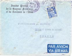 GUYANE FRANÇAISE CAYENNE R.P. TàD 20-1-1953 -En-tête INSTITUT PASTEUR De La …et Du TERRITOIRE DE L'ININI - 1921-1960: Modern Period