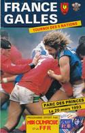 Livret Programme Rugby - Tournoi Des 5 Nations 1993 - FRANCE / GALLES - Parc Des Princes - Rugby