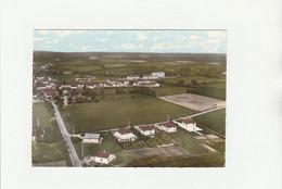 CPSM:CHAMPIGNELLES (89) VUE..ÉCRITE - Other Municipalities
