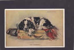 Dog Card -  Old Faithful  !!  -  Mac.  1952. - Perros