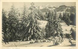 Photo Cpa 74 SALEVE Et Mont Blanc - Chamonix-Mont-Blanc