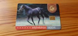 Phonecard Hungary - 18th Phonecard Fair, Horse - 2.000 Ex., Mint Condition! - Ungheria