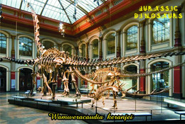 Carte Postale, Animaux Prehistoriques, Jurassic Dinosaurs, Wamweracaudia Keranjei - Altri