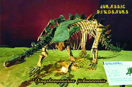 Carte Postale, Animaux Prehistoriques, Jurassic Dinosaurs, Yingshanosaurus Jichuanensis - Altri