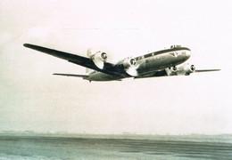 SABENA VLIEGTUIG DC 6 - FOTO 14.80 X 10.20 Cm - Aviation