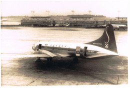 SABENA VLIEGTUIG - FOTO 12.50 X 8.50 Cm - Aviation