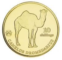 Biafra 10 Shillings 2021 UNC Camel - Biafra