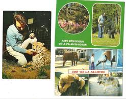 """Lot 3 CPM """" Parc Zoologique De La Palmyre """"(17) M Caille,son Guépard,loup,ours ....... - Other"""
