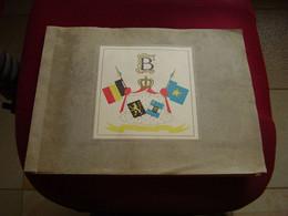 Album Chromos Images Vignettes Lascia  ***  Voyage Roi Baudouin Au Congo  *** - Sammelbilderalben & Katalogue