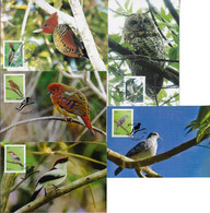 Brazil 2008 2017 2 Complete Series With A Total Of 5 Maximum CardFauna Animal Bird Owl Woodpecker - Altri