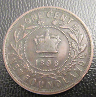 NewFoundLand (Terre-Neuve) - Monnaie One Cent 1896 - Colonies