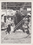 ORIG. OLD PICTURE ALGONQUIN PARK 1958 INJUN JOE INDIAN SOUVENIR SHOP, BRACEBRIDGE, SHOT BEAR FUR HANGS TO DRY IN THE SUN - Andere