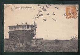 CP - 56 - Camp De Coëtquidan - Poste Colombophile - Rentrée De Vol - Autres Communes