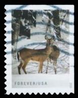 Etats-Unis / United States (Scott No.5532 - Winter Scenes) (o) P2 Right - Used Stamps