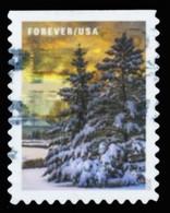 Etats-Unis / United States (Scott No.5534 - Winter Scenes) (o) P3 - Used Stamps