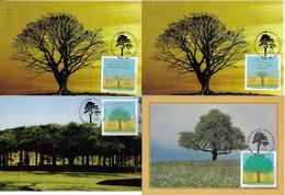 Brazil 2011 Complete Series With 4 Maximum Card Stamp RHM-C-3125/3128 Brazilian Tree National Treasure Flora Nature - Cartoline Maximum